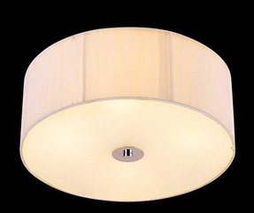Clip On Ceiling Shades Ideas On Foter