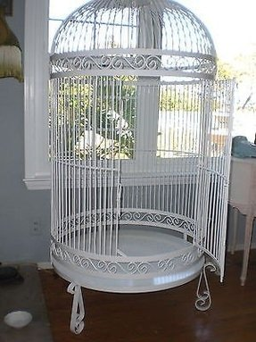 Iron Bird Cages Foter
