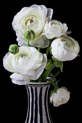Black And White Vase Foter