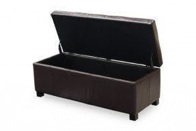 Enjoyable Leather Storage Chests Ideas On Foter Ncnpc Chair Design For Home Ncnpcorg