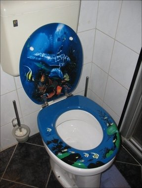 Decorative Toilet Seat Cover Foter