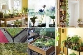 indoor-plant-table Farmhouse Real Indoor Plants on contemporary indoor plants, shabby chic indoor plants, antique indoor plants,