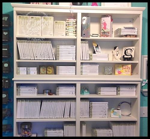 Cd Dvd Wall Storage