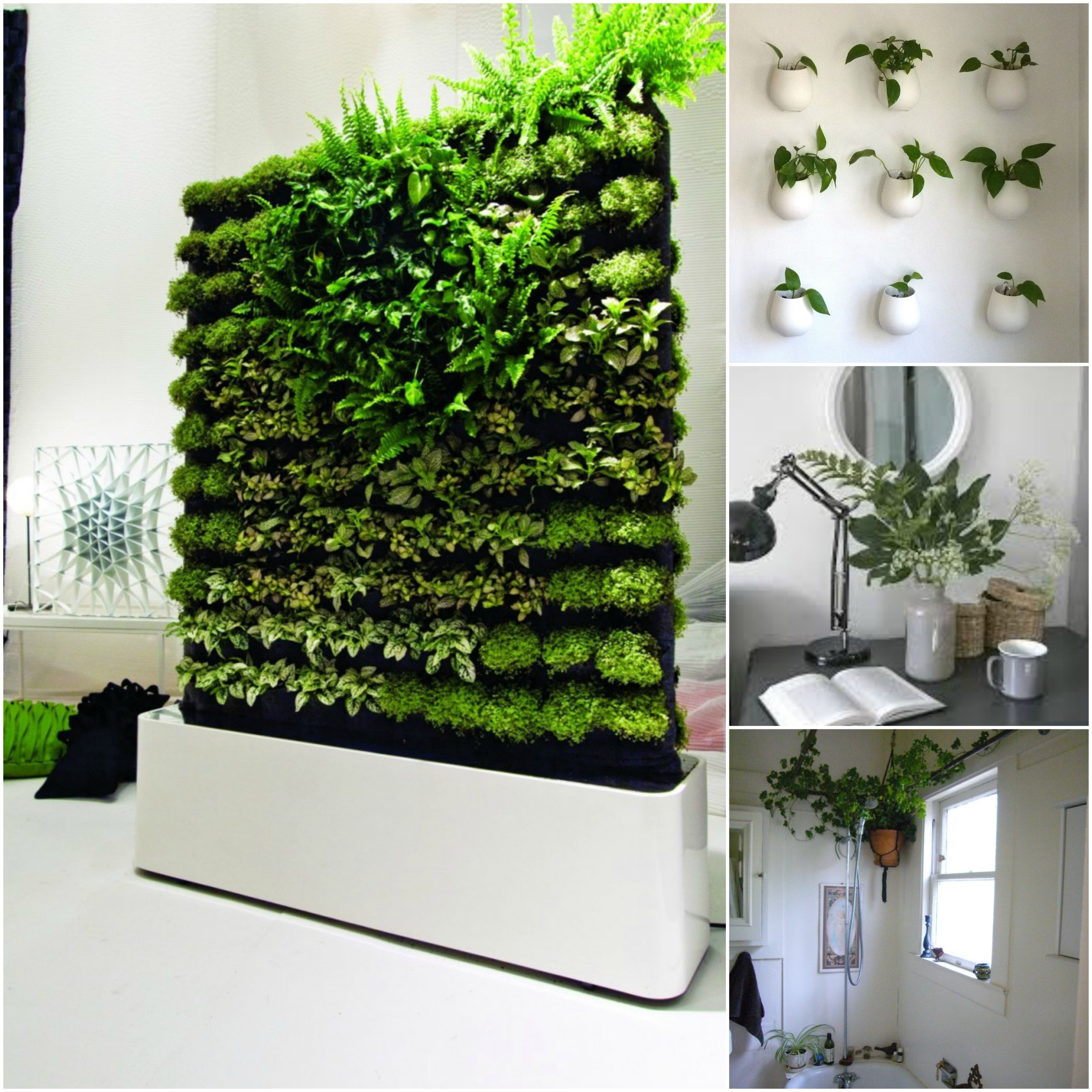 Window sill planter indoor