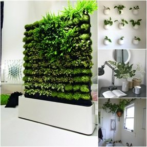 Indoor Planter Boxes - Foter