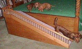 Pet ramp for bed 5