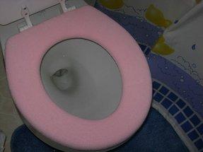 Hot Pink Toilet Seat Foter