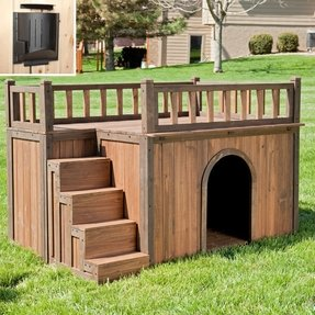 Large dog stairs 2