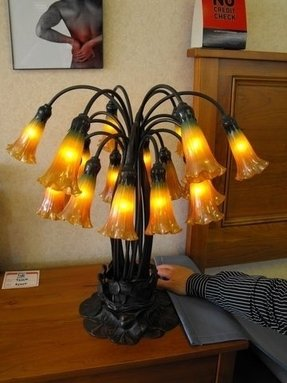 Tulip Glass Lamp Shades Foter