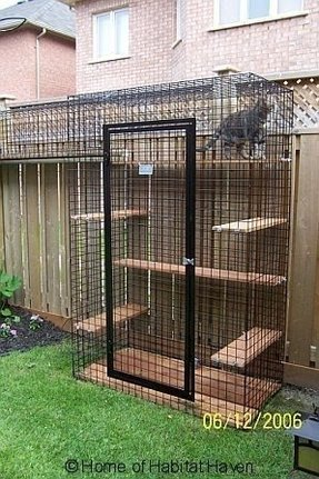 Large cat kennel cages