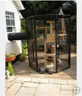 Wire cat cage