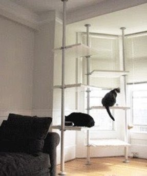 Tree Cat Condo Foter