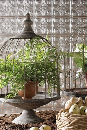 Dome Top Bird Cage Foter