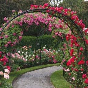 Metal Garden Arch Trellis Foter