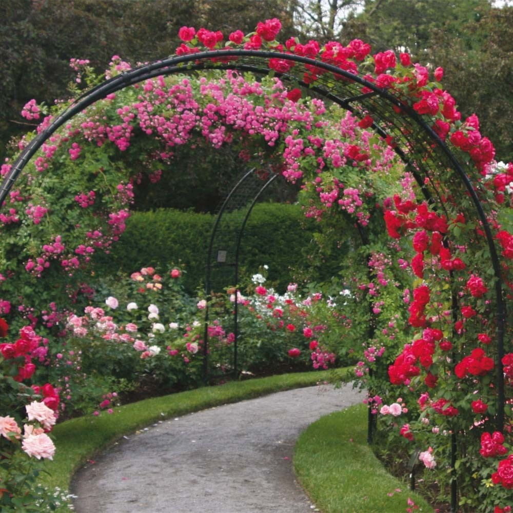Metal Garden Arch Trellis 2