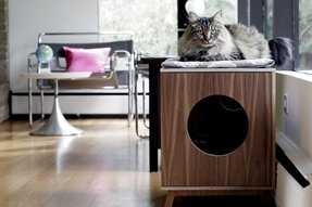 cat litter box covers furniture foter. Black Bedroom Furniture Sets. Home Design Ideas