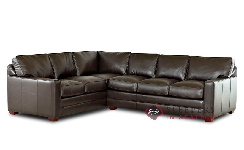 Merveilleux Leather Sectional Sleeper Sofa 1