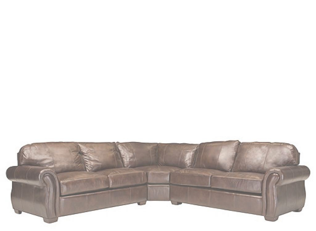 Delicieux Leather Sectional Sleeper Sofa 2