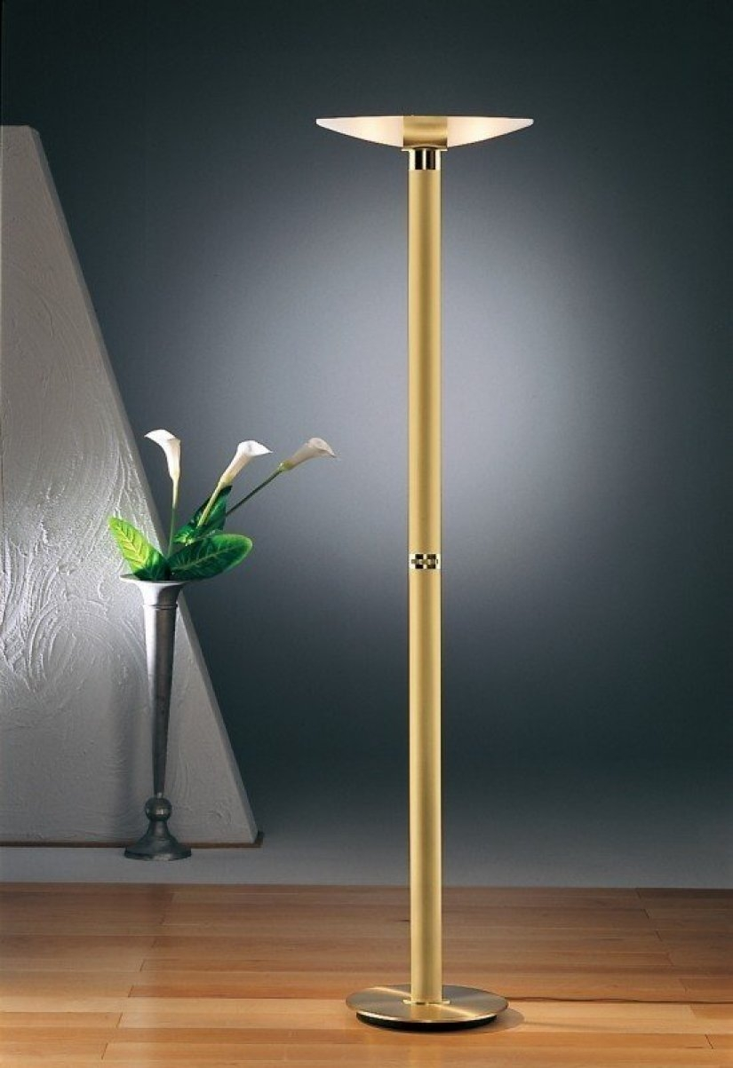 2521 Halogen Torchiere Floor Lamp Modern Floor Lamps