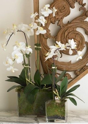 Artificial Orchid Arrangement 9