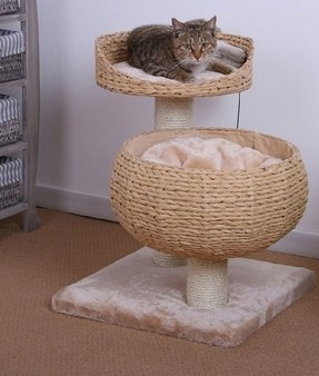 Cat condos for large cats
