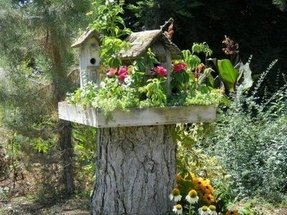 Outdoor bird house 3