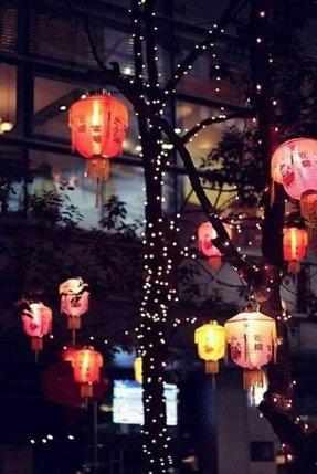 asian pendant lighting. Asian Style Pendant Lights Lighting T