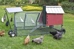 Portable chicken coops for sale