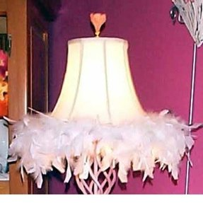 Feather Lamp Shades Ideas On Foter