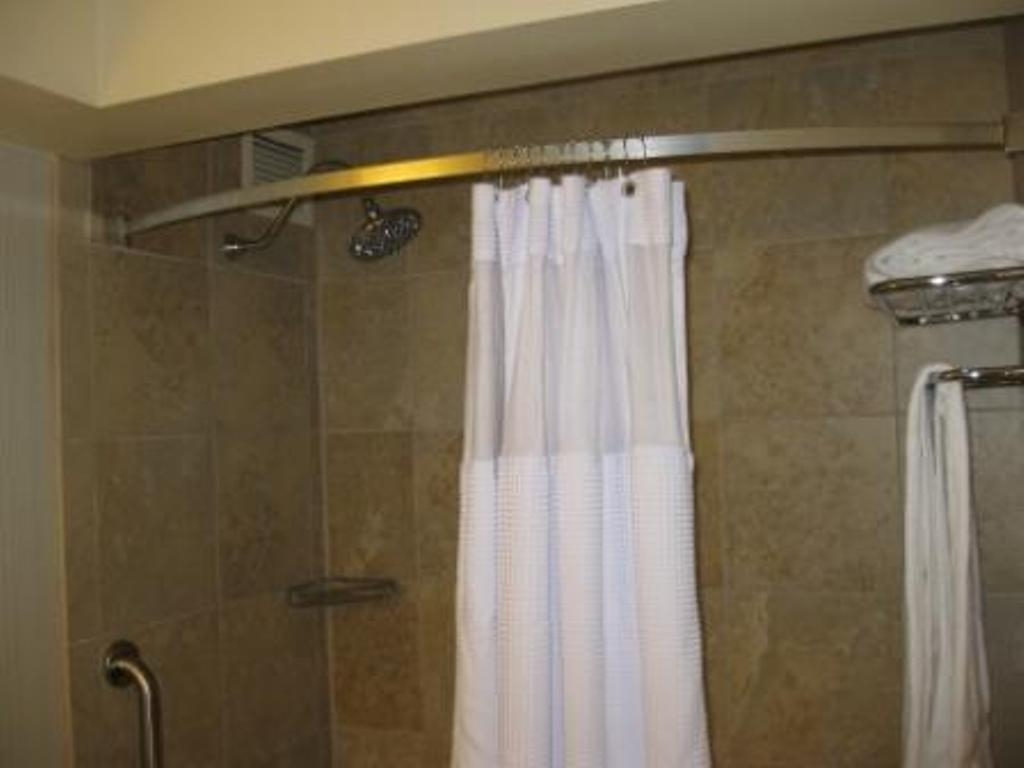 The arc shower rod