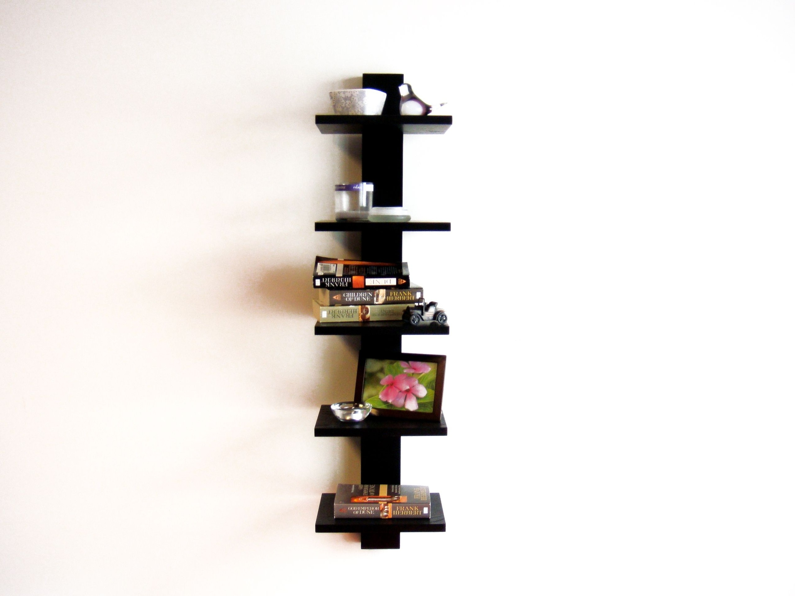 "Spine 37.75"" Wall Bookcase"