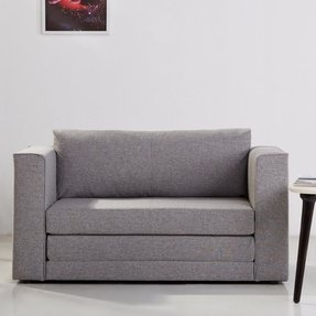 Loveseat Fold Out Bed Ideas On Foter