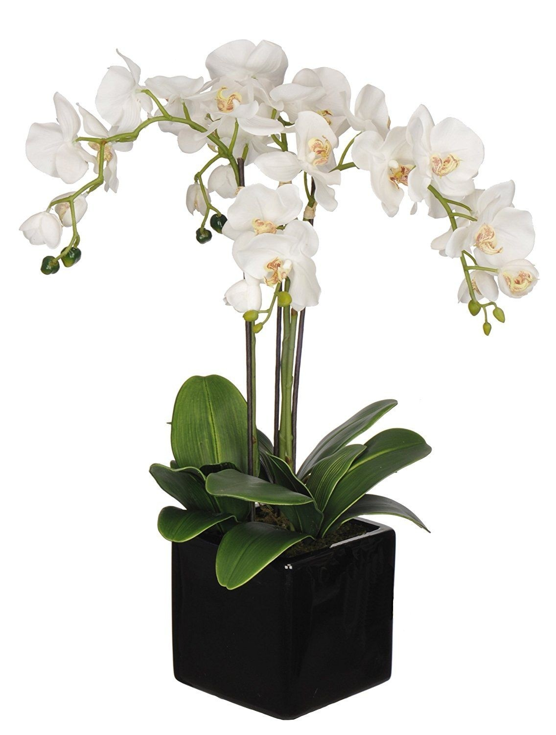 Fake Orchid Arrangements Foter
