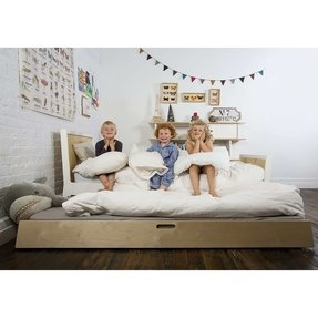Sparrow Trundle Bed in White
