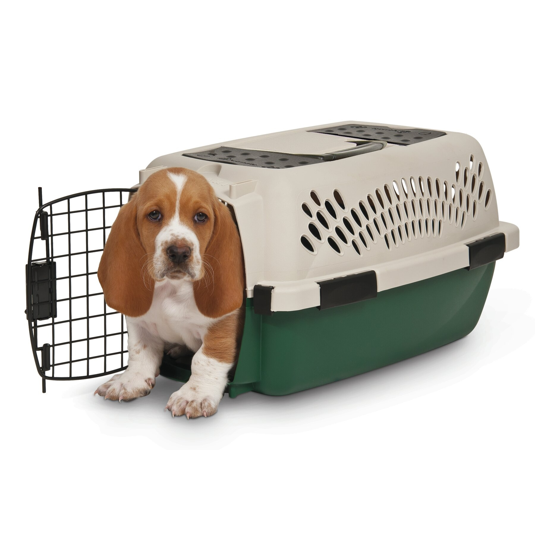Plastic Dog Crate/Carrier