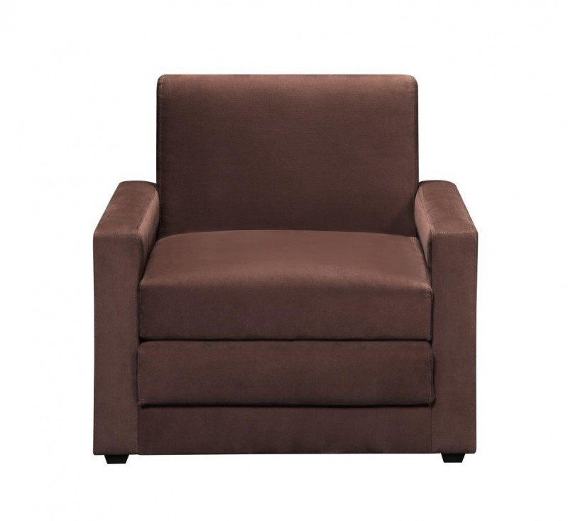 Sleeper Chairs   Ideas On Foter