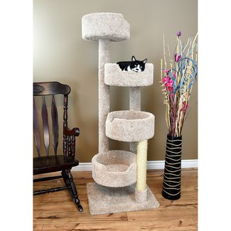 Compact Cat Condo With A Stairway
