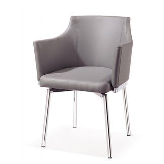 Metal Frame Modern Dining Chair