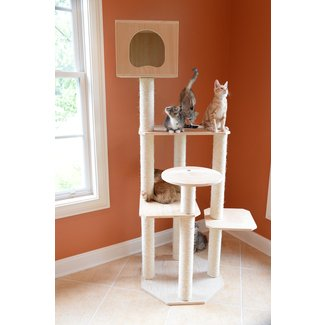 Smooth Polish Solid Wood Cat Tree