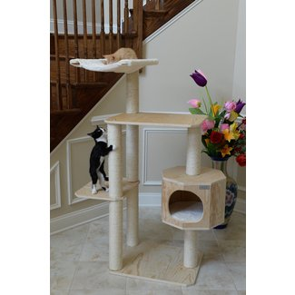 Solid Wood Cat Tree With Four Levels