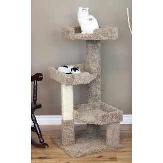 Wooden Cat Condo With Soft Carpet Upholstery