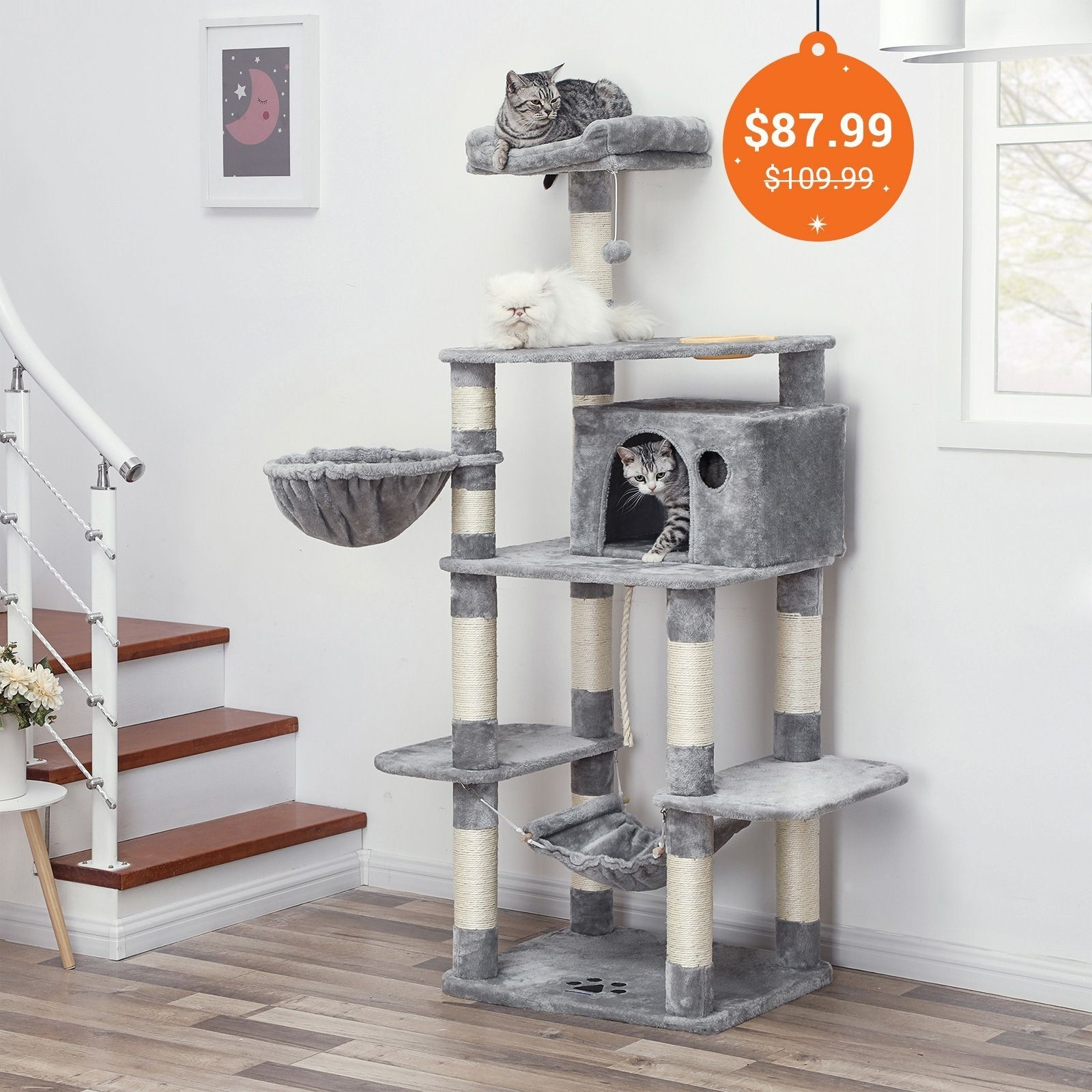 How To Choose Cat Trees & Condos