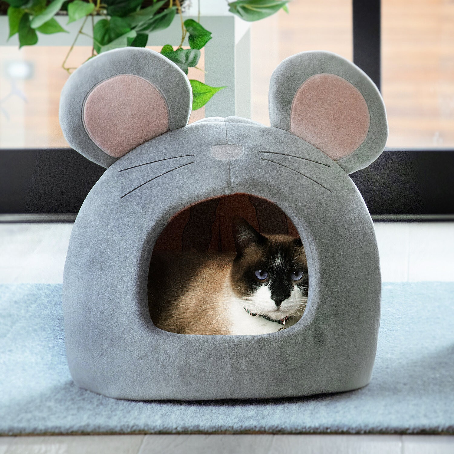 Novelty Specialty Cat Bed