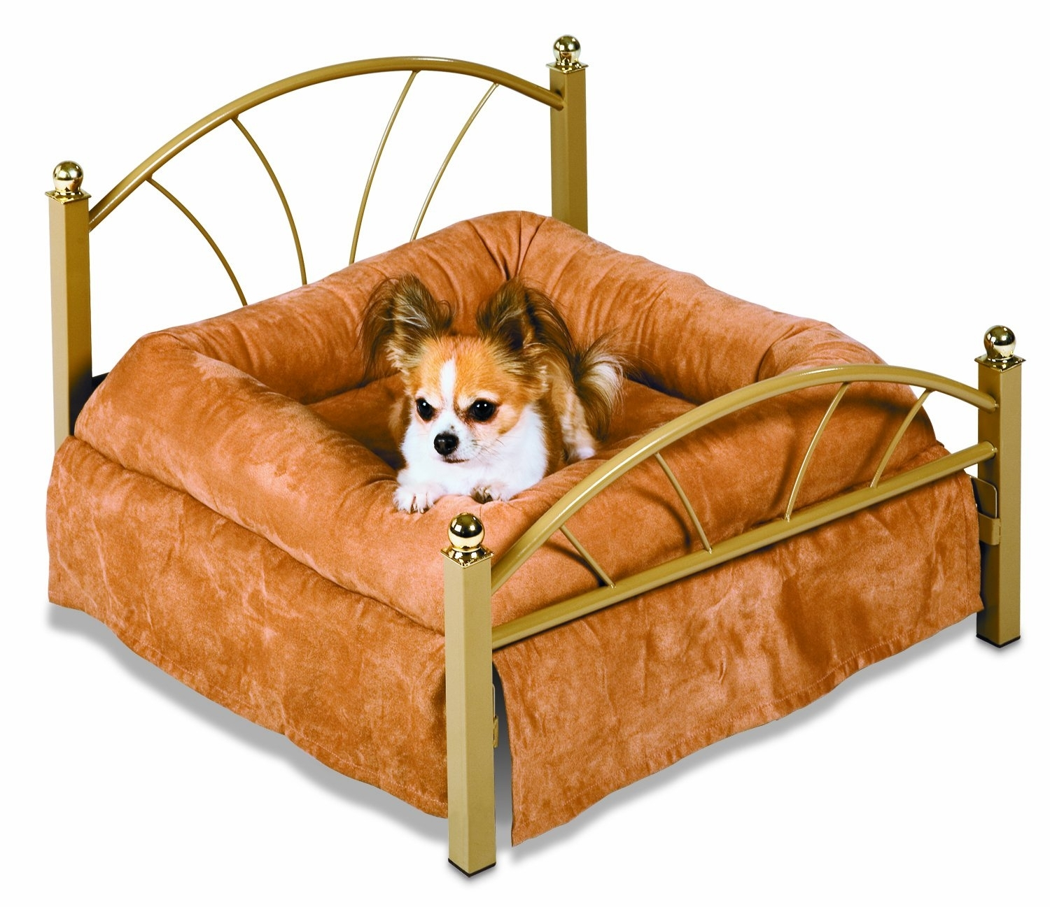 Picture of: Dog Beds That Look Like Real Beds Ideas On Foter