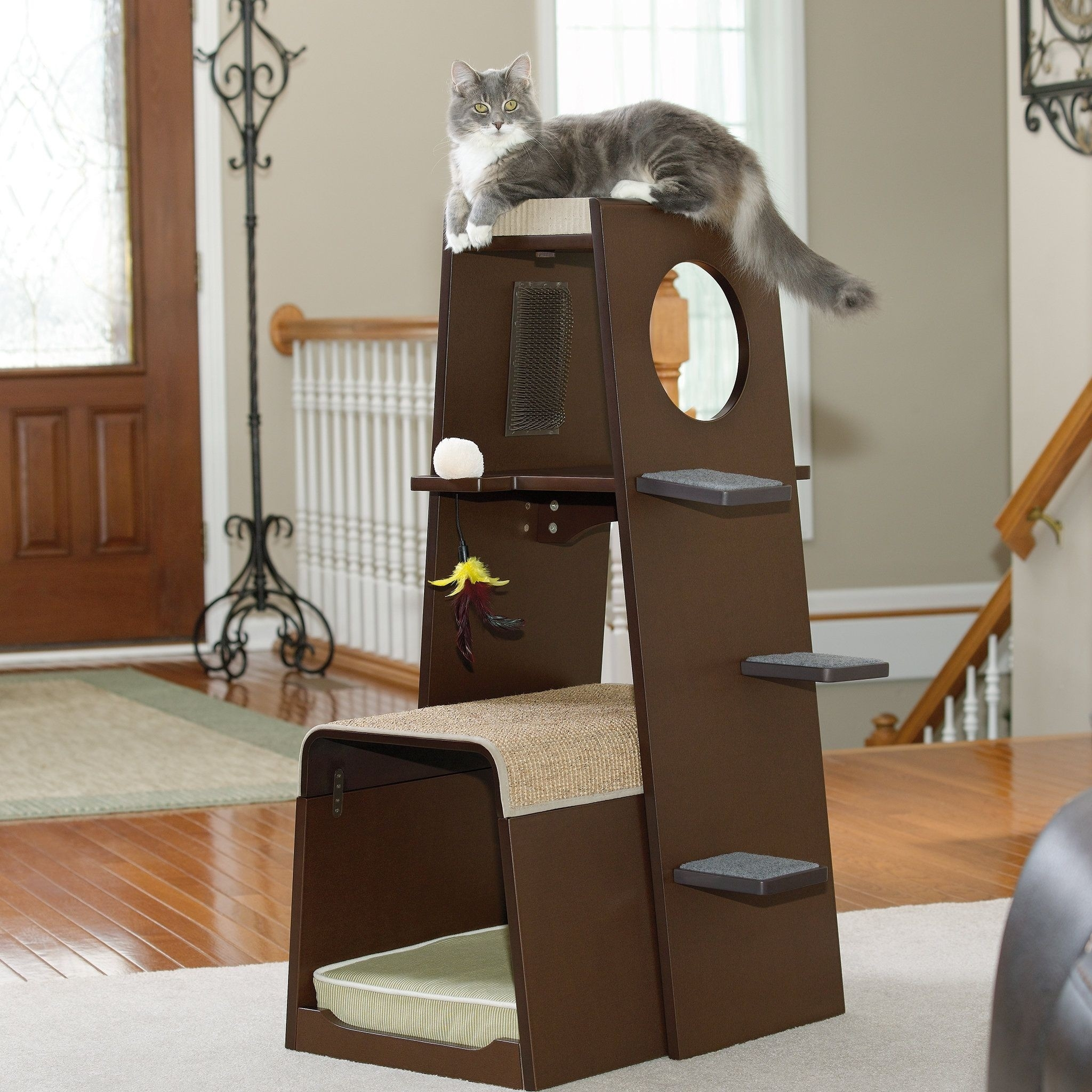 Eco Friendly Cat Tree Ideas On Foter