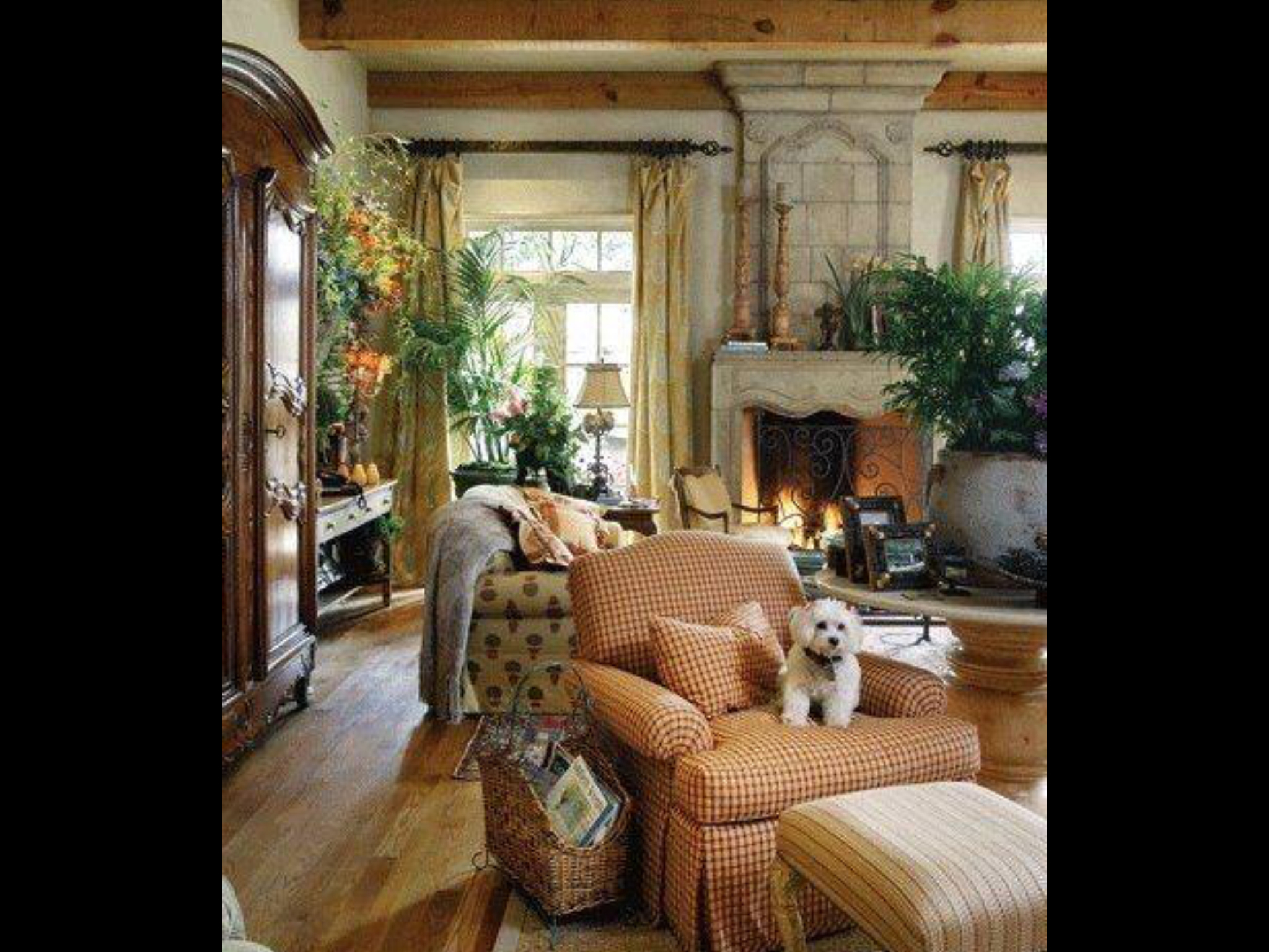 Picture of: French Country Living Room Chairs Ideas On Foter