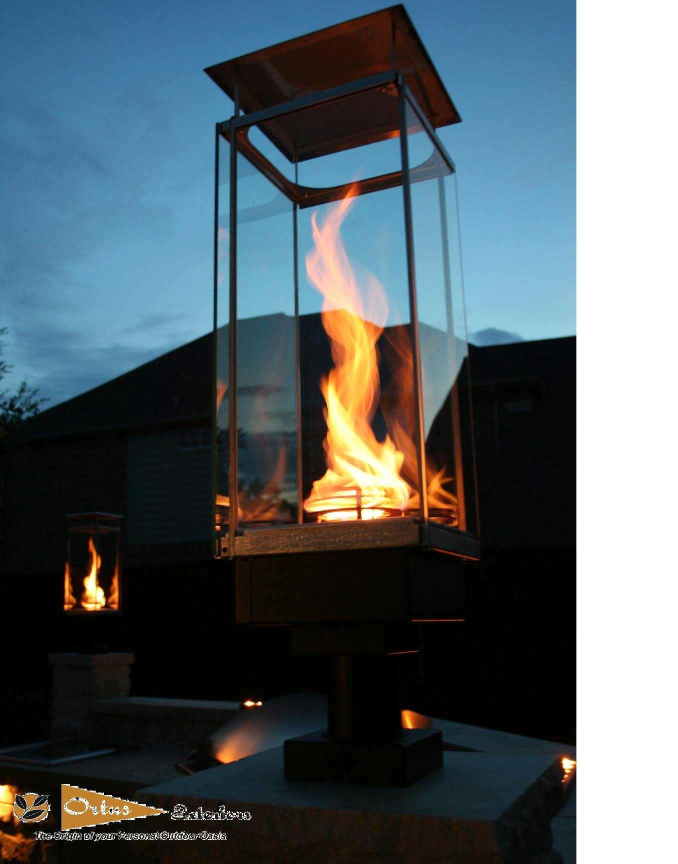 Picture of: Outdoor Fire Lamps Ideas On Foter