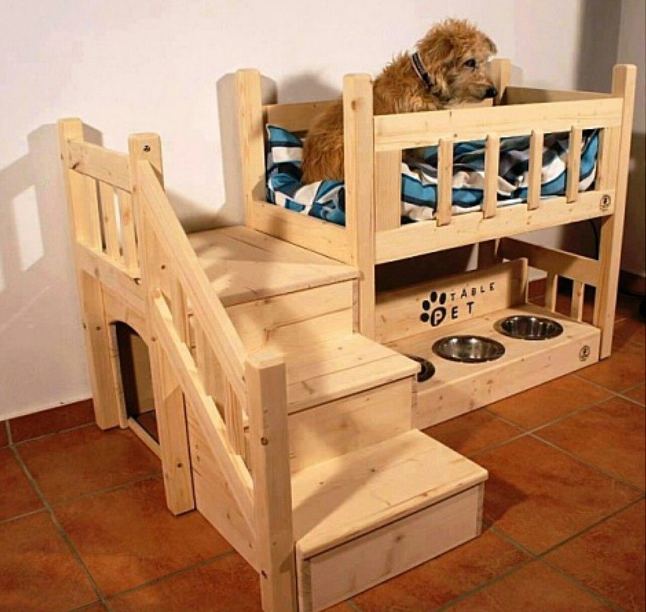 Picture of: Pet Bed Furniture Ideas On Foter